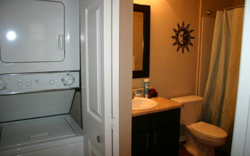 Reflection Cove Bathroom West St. Louis County MO Corporate Apartment